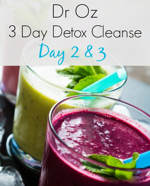 Dr Oz 3 Day Detox Cleanse (Day 2 & 3)
